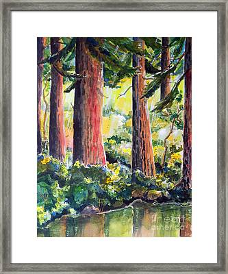 Redwoods Framed Print by Terry Banderas