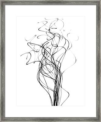 Reed Stems Framed Print by Albert Koetsier X-ray