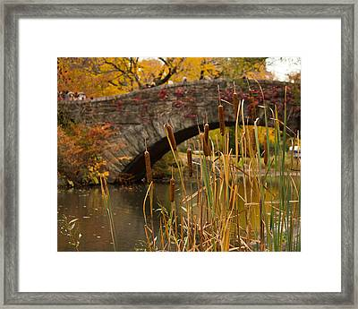 Framed Print featuring the photograph Reeds And Gapstow Bridge by Jose Oquendo