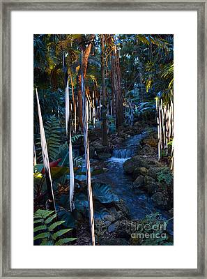 Reeds And Waterfall Framed Print by Edna Weber