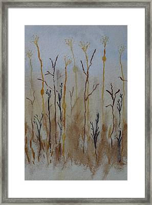 Reeds And Weeds Framed Print by Catherine Arcolio