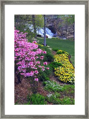 Reedy Falls Park In Downtown Greenville Sc Framed Print