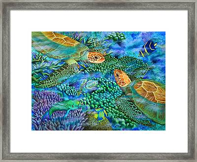 Reef Encounter Framed Print by Carolyn Steele