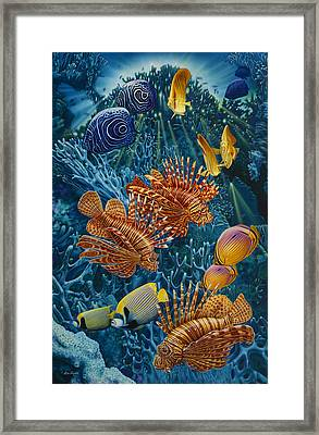 Reef Two Framed Print by Larry Taugher