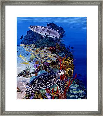 Reefs Edge Re0025 Framed Print by Carey Chen