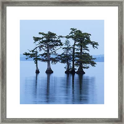 Reelfoot Lake Framed Print by Eric Foltz