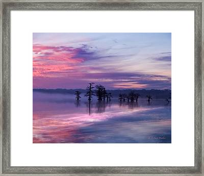 Reelfoot Lake Sunrise Framed Print