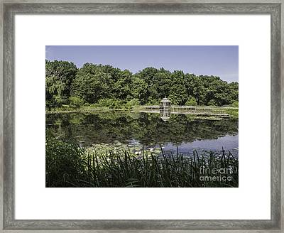 Refection In The Pond Framed Print