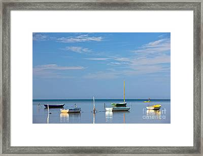 Refections Framed Print by Anthony Calleja