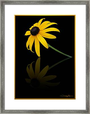 Reflect Framed Print by Christine Nunes
