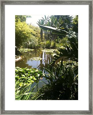 Reflected Beauty Framed Print
