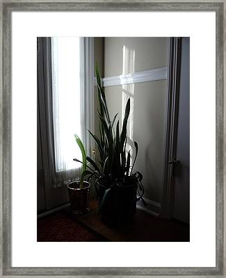 Reflected Cross Framed Print by Lugenia Dixon