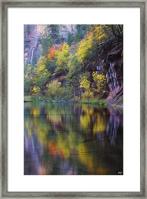 Reflected Fall Framed Print by Peter Coskun