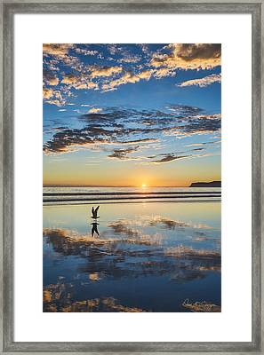 Reflected Flight Framed Print