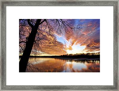 Reflected Glory Framed Print by Cricket Hackmann