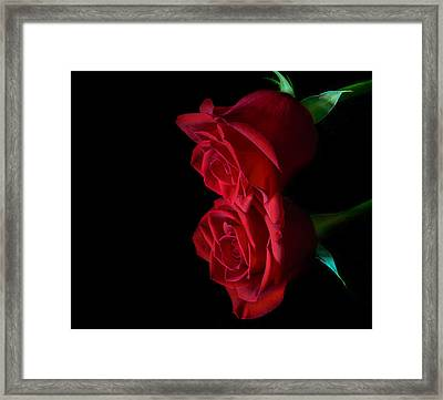 Reflecting Beauty Framed Print