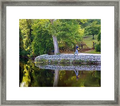 Reflecting Framed Print by Brian Wallace