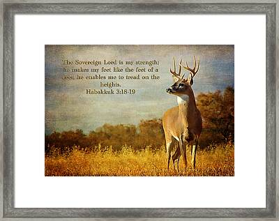 Reflecting His Glory Framed Print
