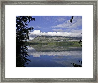 Reflecting On It Framed Print
