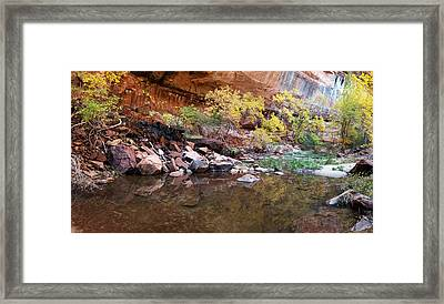 Reflecting Pond In Zion National Park Framed Print by Panoramic Images