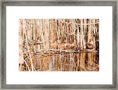 Reflection 2 Framed Print by BandC  Photography
