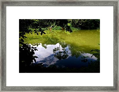 Reflection Framed Print by Arie Arik Chen