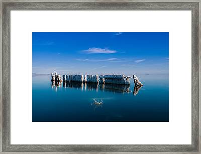 Reflection At Salton Sea Framed Print