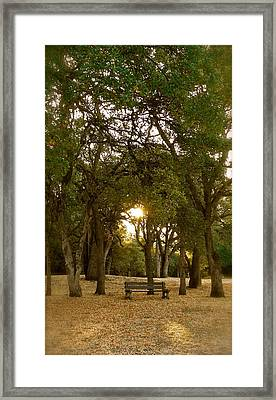 Reflection At Sunrise Framed Print by Michele Myers