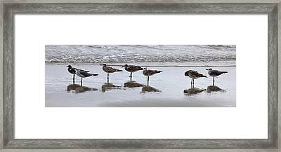 Reflection At The Beach Framed Print