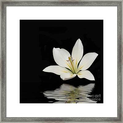 Reflection Framed Print by Brian Roscorla