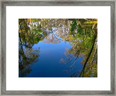 Reflection Framed Print by Denise Mazzocco