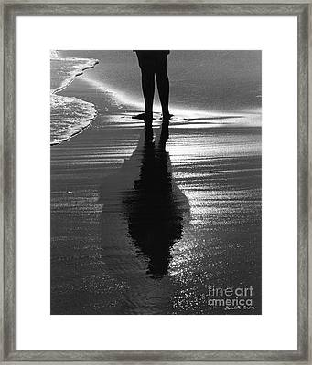 Reflection - Horseneck Beach Framed Print by David Gordon