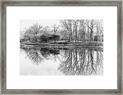 Reflection In Black And White Framed Print by Julie Palencia