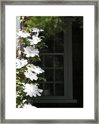 Reflection Framed Print by James McAdams