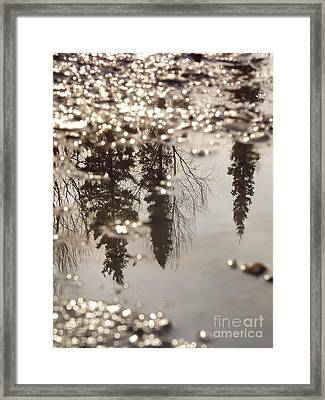 Reflection Framed Print by Jennifer Kimberly