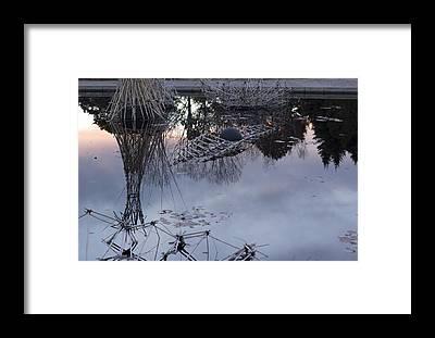 Kizuna Framed Prints