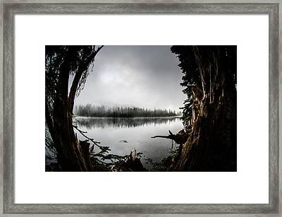Reflection Lake Through The Stump Framed Print by Brian Xavier