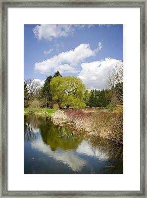 Reflection Landscape Framed Print by Christina Rollo