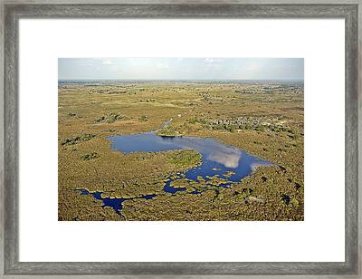 Reflection Framed Print by Liudmila Di