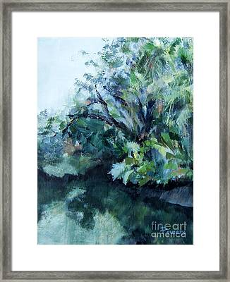 Reflection Framed Print by Mary Lynne Powers