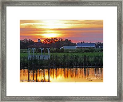 Reflection Of Beauty Framed Print