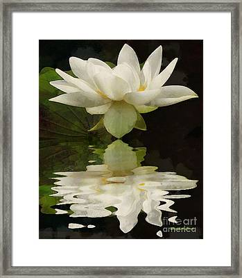 Reflection Of Beauty Framed Print by Elizabeth Coats