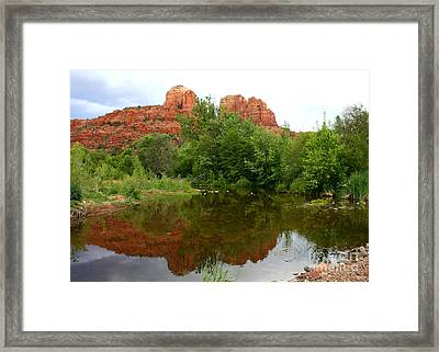 Reflection Of Cathedral Rock Framed Print by Carol Groenen