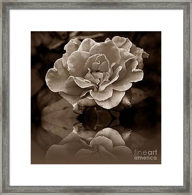 Reflection Of Fading Times Framed Print by Scott Allison