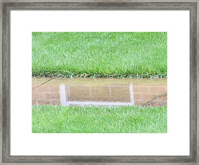 Reflection Of Life Framed Print