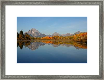 Reflection Of Mount Moran In Autumn Framed Print by Jetson Nguyen