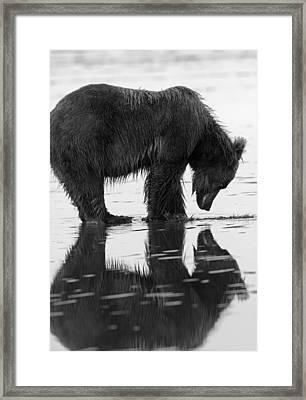 Reflection Of Our Inner Selves Framed Print