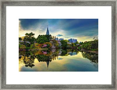 Reflection Of Spring Framed Print by Midori Chan