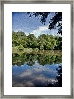 Reflection Of Summer Framed Print