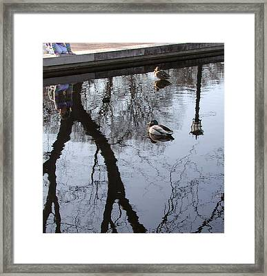 Reflection Of The Watcher Framed Print by Jack Adams